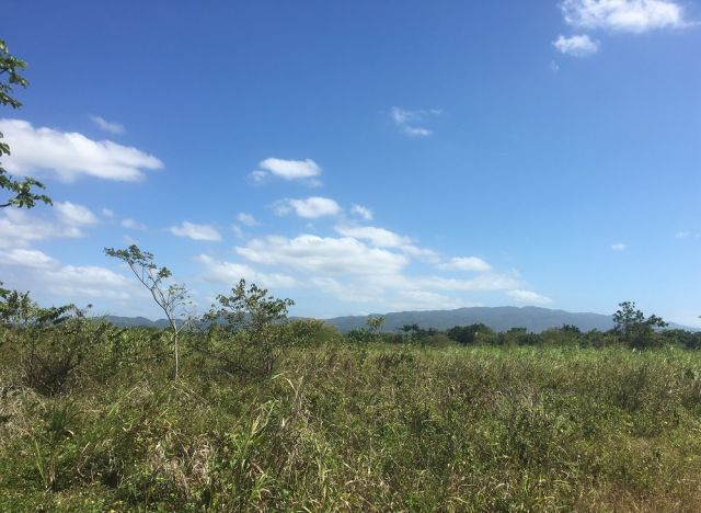 Jamaican view of solar site